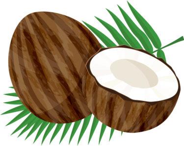 MCTオイルがダイエットにオススメな理由 なぜ低糖質に効果絶大なの?